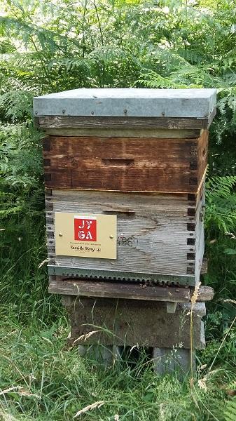 Les ruches de Jyga