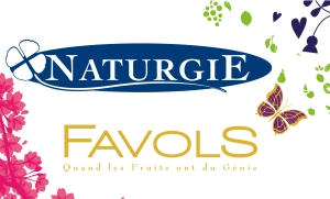 Logo Favols